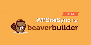 WordPress blog post and page content sync beaver builder